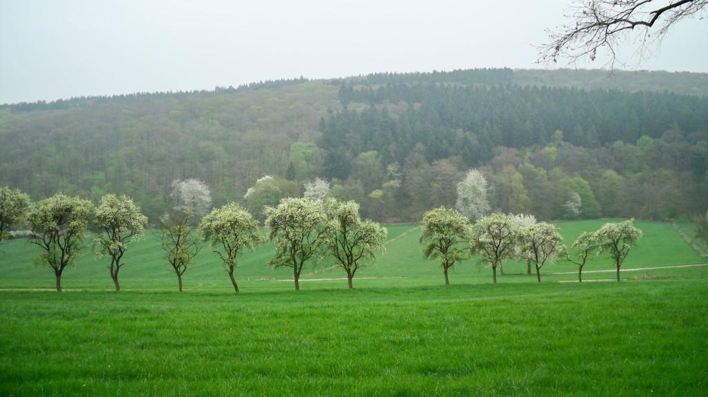 Auf dem Weg zur Talsperre bei Kirchheim © Thilo Götze