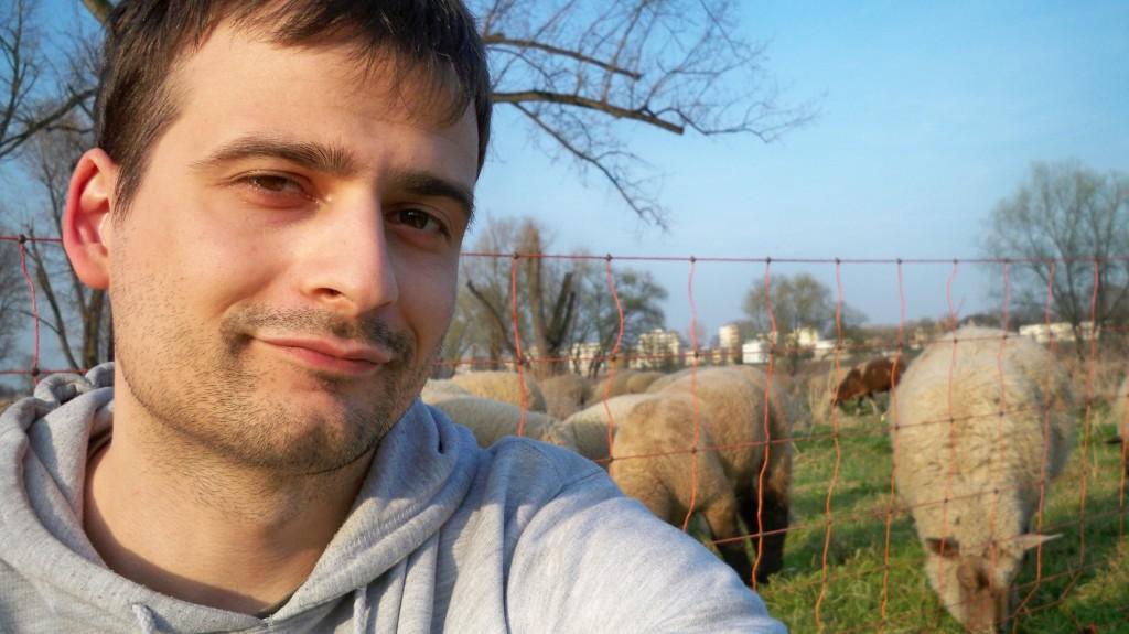 Selfie mit einem Schaf