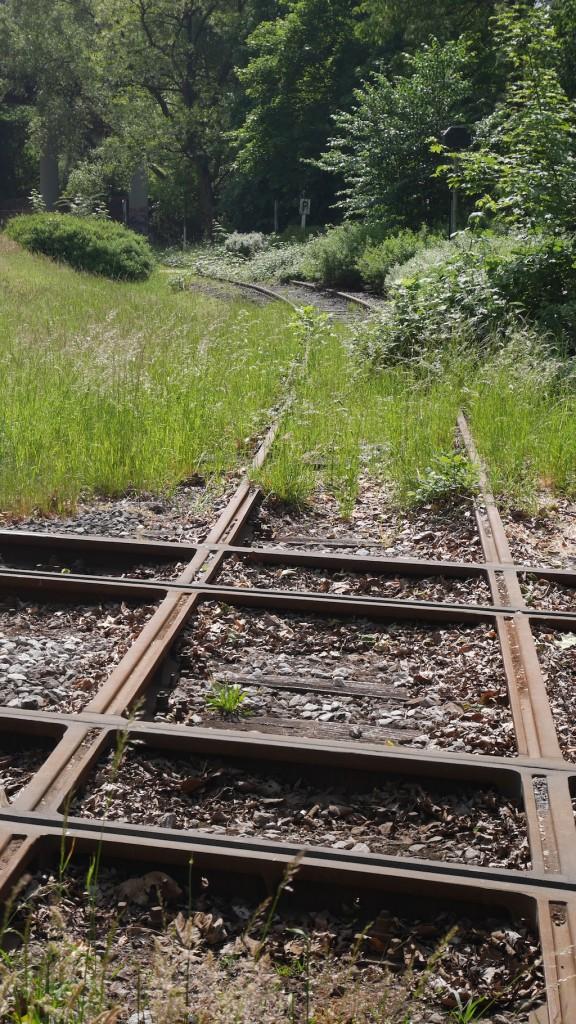 Gleiskreuzung im 90 Grad Winkel in Krefeld © Landesblog NRW