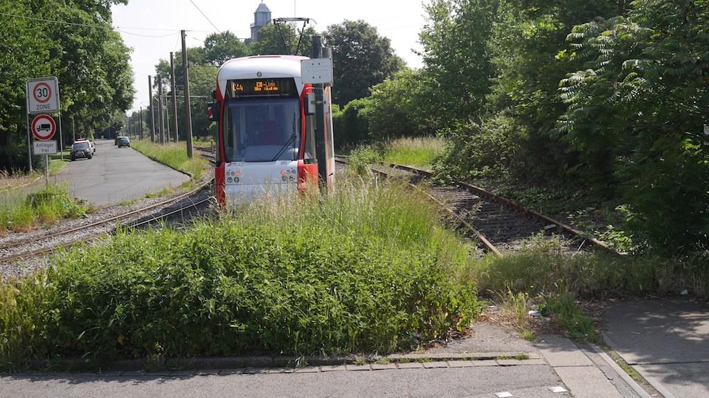 Linie 044 vor der Haltestelle Botanischer Garten © Landesblog NRW