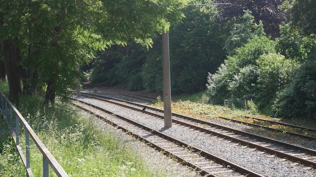 Totes Gleis Abbiegung Richtung Crönpark in Krefeld © Landesblog NRW