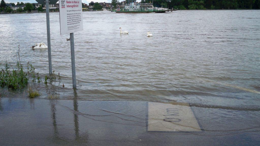 Hochwasser Mondorfer Faehre (c) Landesblog NRW