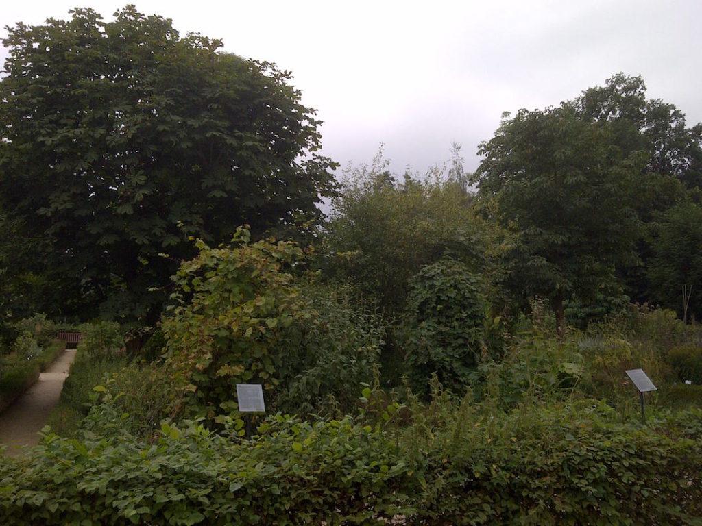 Kräutergarten von Schloss Moyland
