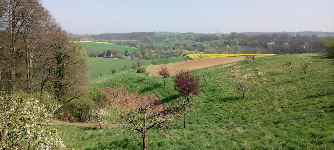 Aussicht von der Terrasse des Guts Jägerhof