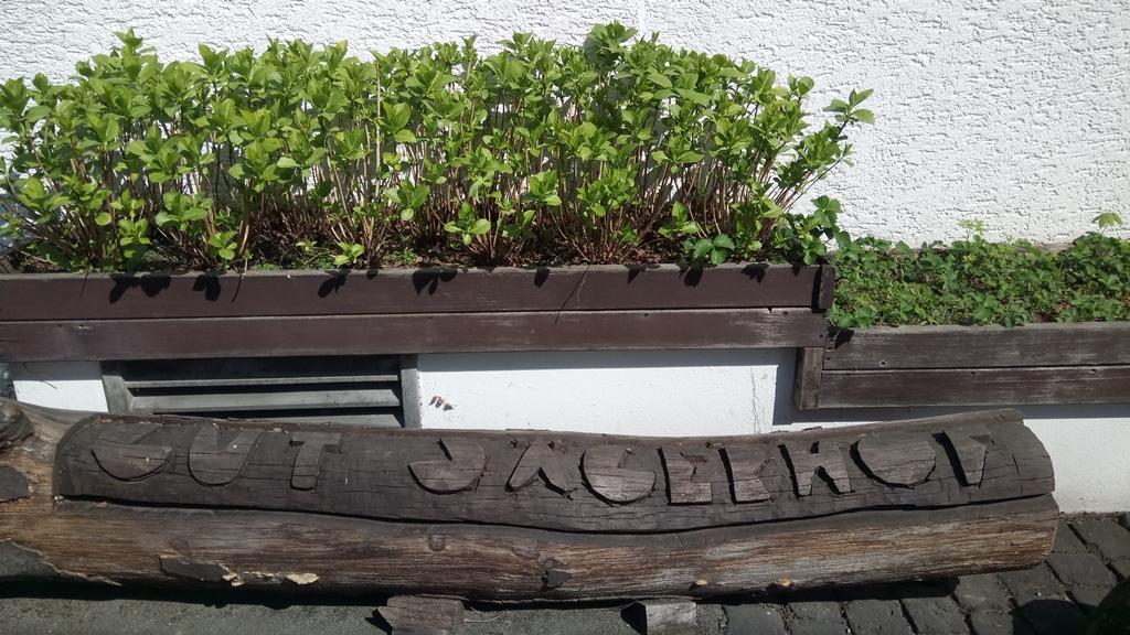 Bank mit Holzaufprägung vorm Gut Jägerhof