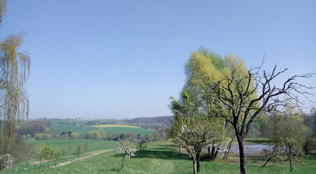 Blick von der Terrasse des Gut Jägerhof