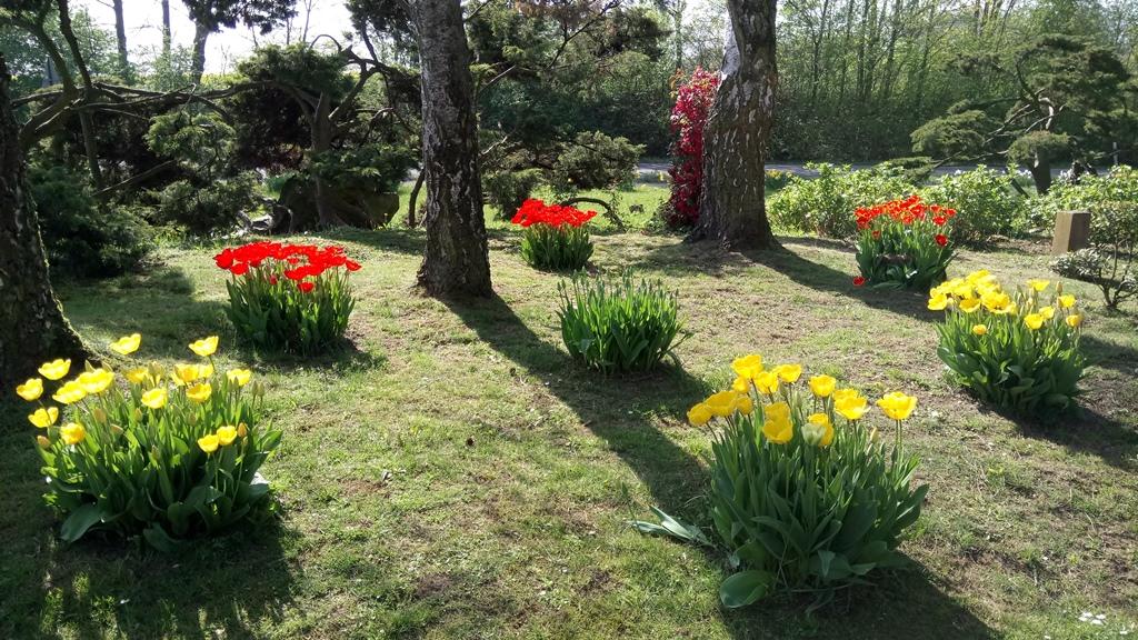 Vorplatz mit Blumen vorm Jägerhof gut Erkrath